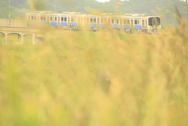 あの日見た列車
